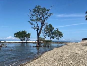 PT. Tambang Batuan Andesit, Desa Lebani, Tappalang Barat, Mamuju, Sulawesi Barat.